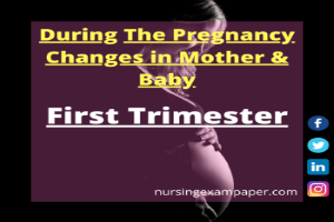 Physical Pregnancy changes in Body During First trimester