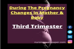 pregnancy period, Third Trimester