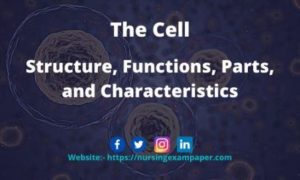 Its Structure, Functions, The cell Parts, and Characteristics