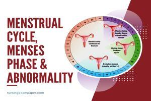 Menstruation, Menstrual Cycle, Menses phase & Abnormality