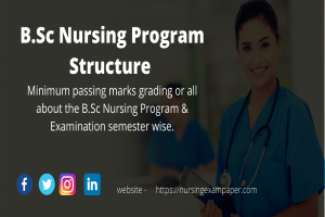 B.Sc Nursing Program, Structure & Examination