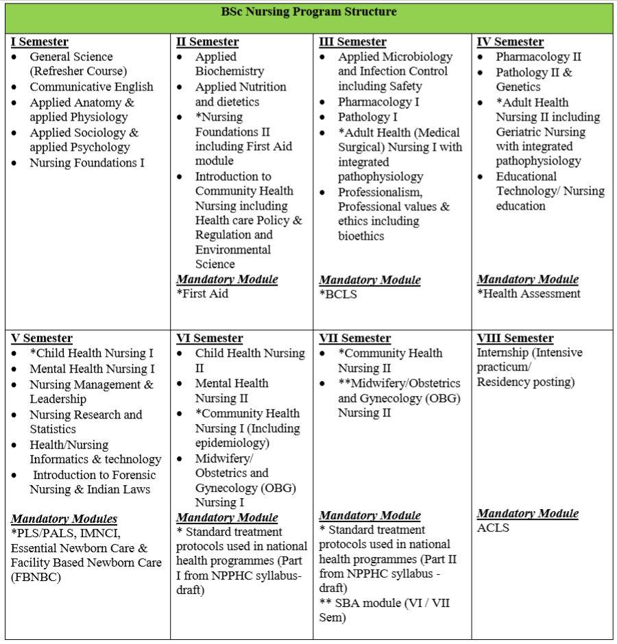 B.Sc Nursing Program Structure & Examination semester wise