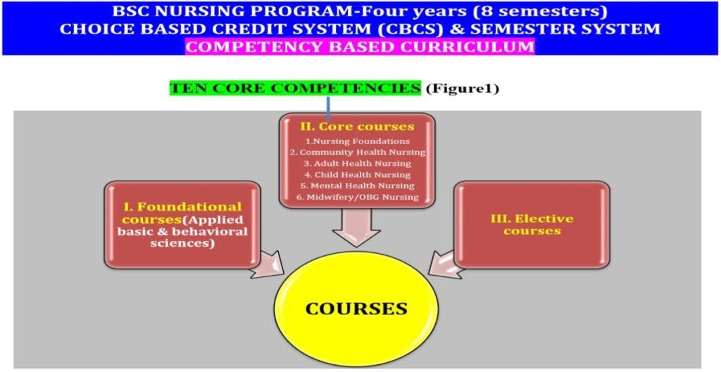 B.Sc Nursing Program Structure & Examination